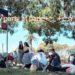 【子供の誕生日】公園での誕生日パーティー準備を簡単に!計画のポイントとオススメのショップリスト!!